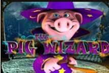 Pig Wizard